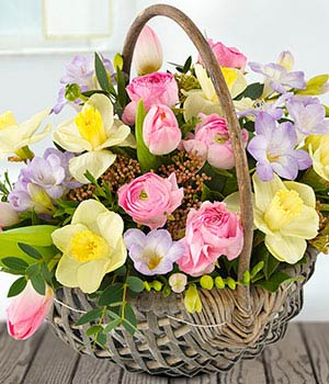 Flowers for spring gallery flower decoration ideas flowers for spring gallery flower decoration ideas flowers for spring choice image flower decoration ideas flowers mightylinksfo Images