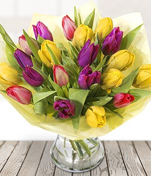 Colourful Tulips