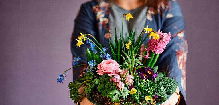 Mother's Day Plant Gifts